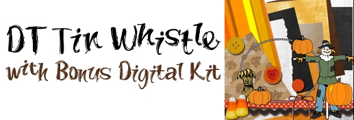 DT Tin Whistle with Bonus Kit